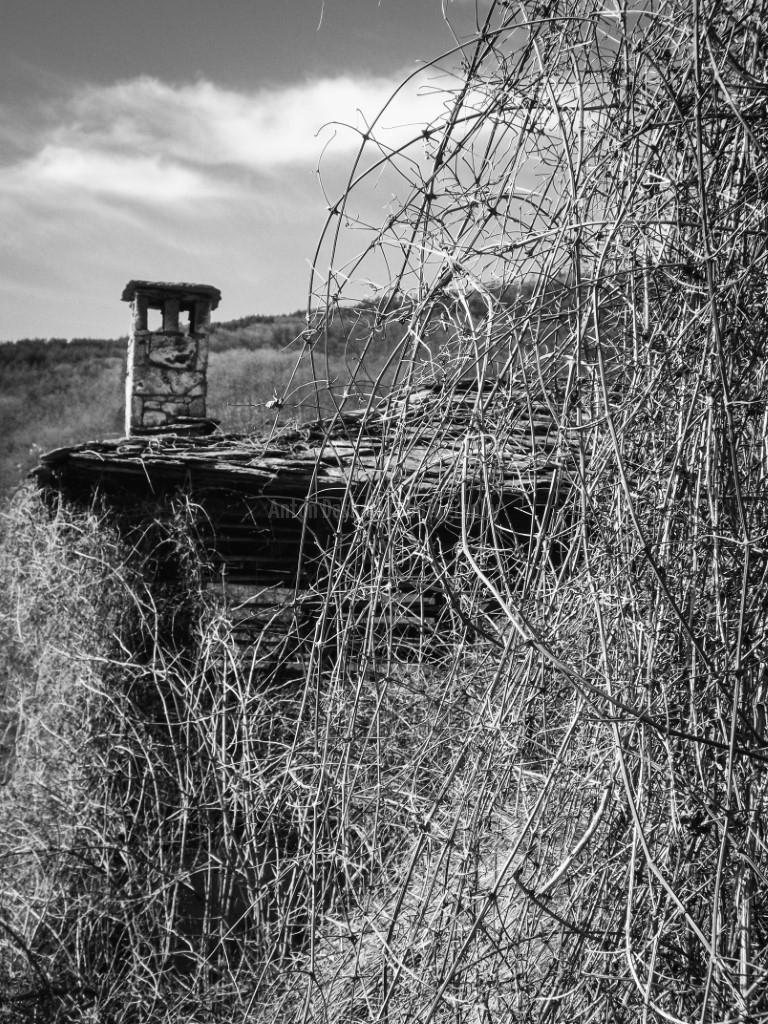 Изоставена къща в село Косово